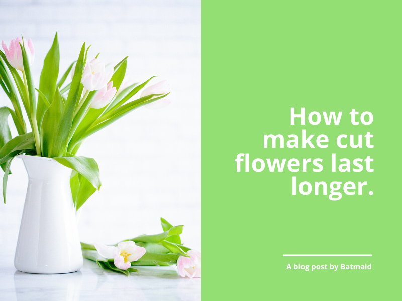 How to make cut flowers last longer naturally